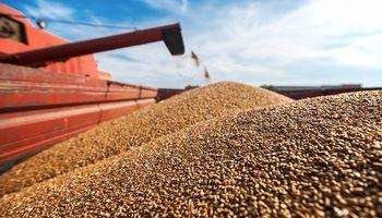 Exportadores descartan problemas con Brasil por el trigo y anticipan cambios en retenciones