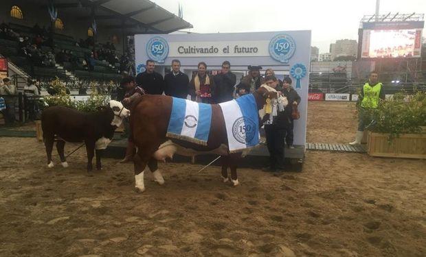 El Gran Campeón Hembra de Los Orígenes, de Agrodec. Foto: La Nación