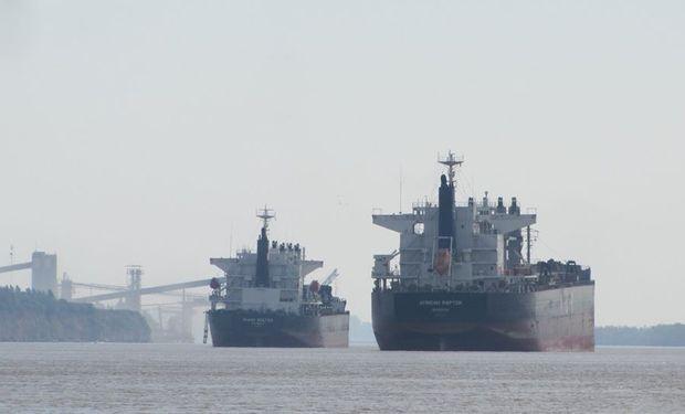 """Exportadores: """"La soberanía alimentaria en este sector siempre estuvo garantizada"""""""