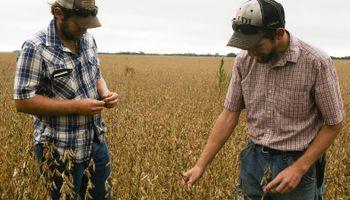 Farmers temen la próxima gran crisis del sector