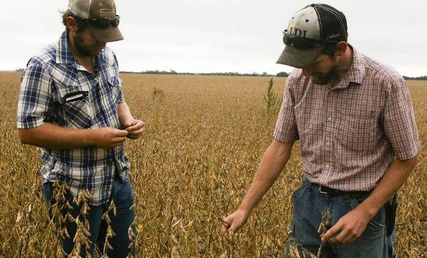 Los agricultores Spencer y Mason Stout, de Kansas, tuvieron que encontrar segundos empleos. PHOTO: JESSE NEWMAN.