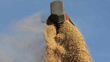 La corredora de granos que entró en default avanza en la capitalización de la deuda