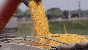 La devolución de retenciones de IVA sobre granos y el SISA
