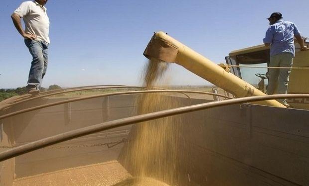 Este año se levantarán unas 14 millones menos de toneladas que durante el 2017, reconoció el Gobierno en Brasil.