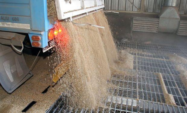 Sigue demorada la compra de granos gruesos