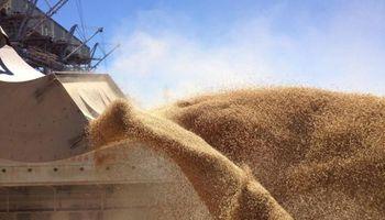 Crece el interés global por los granos argentinos