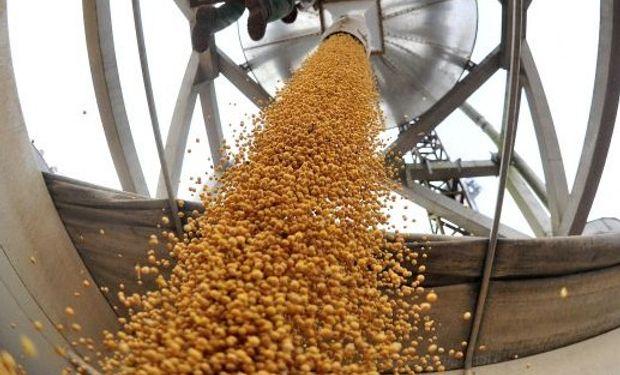 Los operadores siguen de cerca el desarrollo climático en Brasil. En este momento todavía hacen falta más lluvias para continuar con la siembra de soja.