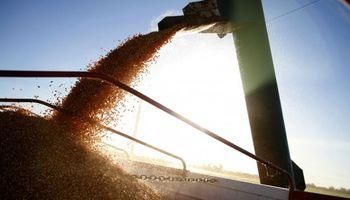 La molienda de soja caería un 15% por la guerra comercial