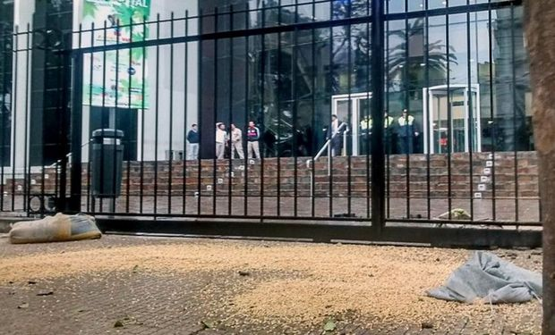 La vereda cubierta de maíz ayer, frente a la Legislatura provincial. Foto: LA NACION / Fernando Font