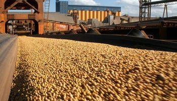 El USDA proyecta granos para todos