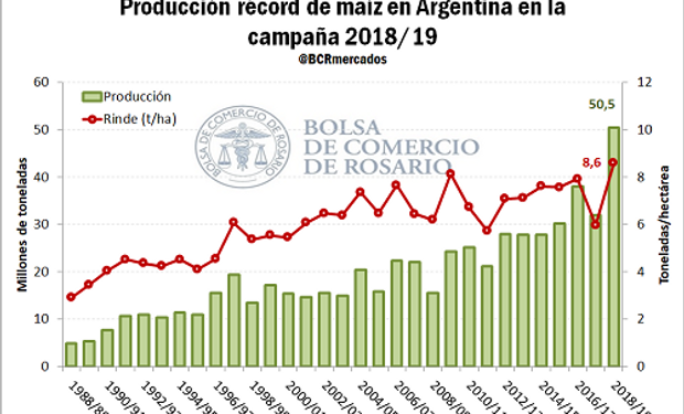 La campaña 2018/19 de maíz se inscribe en la historia argentina como la primera en superar los 50 millones de toneladas de producción.