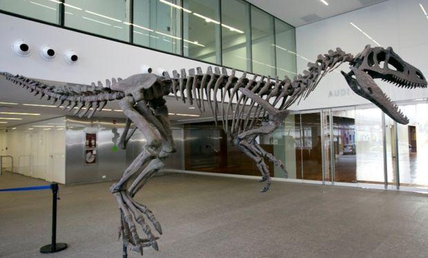 Se trata de un terópodo de unos seis metros de longitud.
