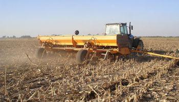 Todas las claves para la siembra de grano fino