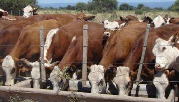 Preocupación en Liniers por oferta reducida