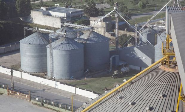 La harina de soja es el principal producto de exportación del país.