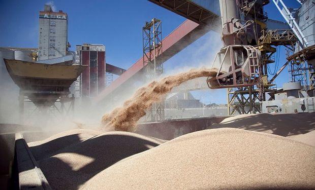Subas para la harina limitaron las bajas de la soja: cuánto pagaron en Rosario
