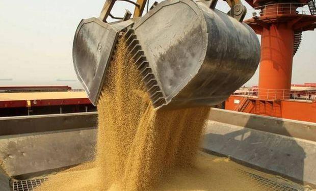 En el puerto chino de Nantong, en la provincia de Jiangsu, otro envío de harina de soya para atender la creciente demanda de proteínas de los consumidores de ese país.