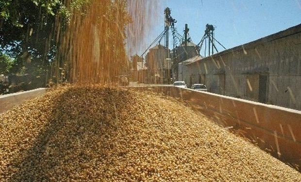 Harina de soja lidera subas con un 14%
