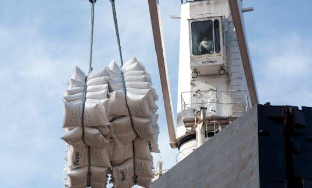 Exportación de harina de trigo: se consolida un incremento del 72% por encima del promedio de los 3 últimos años.