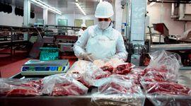Se distribuyó la Cuota Hilton: cómo se repartieron los envíos de carne y qué pasa con Gran Bretaña