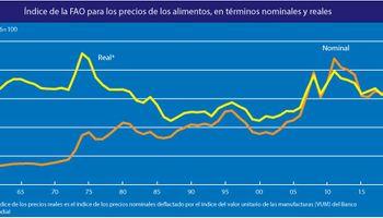 Por 11º mes consecutivo aumentó el precio de los alimentos a nivel global: las razones