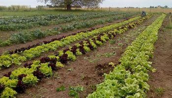 Presos aprenden horticultura para reinsertarse laboralmente cuando recuperen su libertad