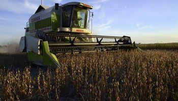 """Argentina se encamina a la segunda mayor cosecha de la historia: un aporte """"invaluable"""" para la economía"""