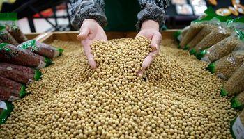 Se desploma la soja en Chicago por la incertidumbre que genera el coronavirus