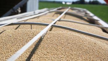 La soja subió en Chicago y Rosario acompañó por el mayor interés de la exportación
