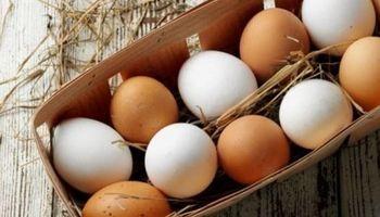 Mitos, verdades y diferencias entre los huevos blancos y los de color