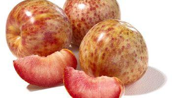 Huevo de dinosaurio, la nueva fruta que se comercializa en Argentina