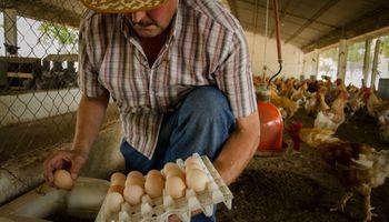 La Pampa busca convertir el norte de la provincia en un polo aviar