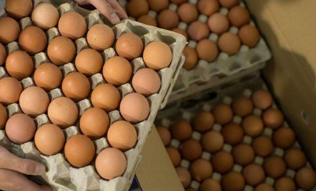 Productores de huevo piden una recomposición en los precios y no descartan que el país importe por falta de producción
