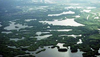 Más del 20 por ciento del país corresponde a humedales