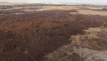 """""""Detrás del humo"""": presentan un documental sobre la quema de las islas"""
