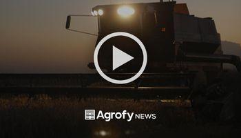EN VIVO: empresarios, especialistas y funcionarios debaten sobre la actualidad agroindustrial