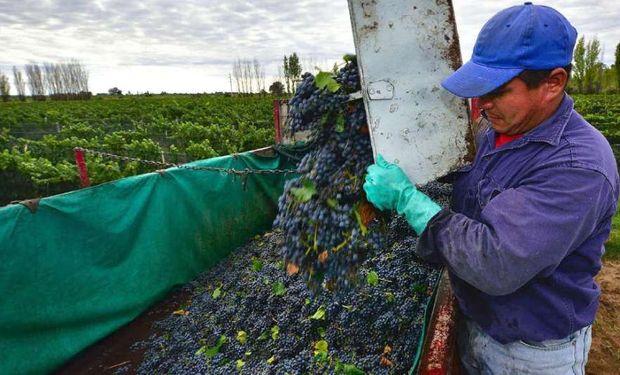 """Comunicado de FAA en Mendoza ante la """"desesperación de los productores vitivinícolas""""."""
