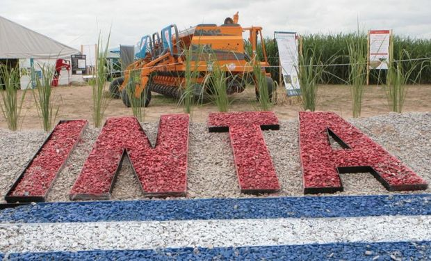 Convocatoria del INTA para coordinadores.