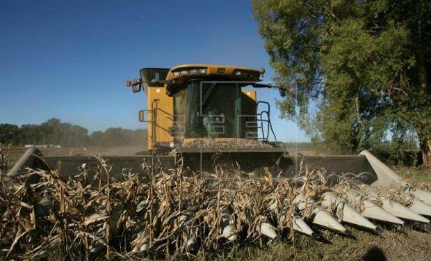 El complejo oleaginoso-cerealero aportó, el año pasado, el 45% del total de las exportaciones de la Argentina, según el Indec.