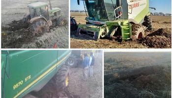 Imágenes de las serias dificultades para la cosecha en Córdoba