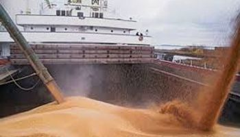 Transporte interior de granos en Brasil
