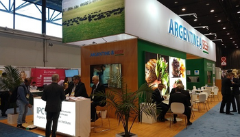 La carne argentina está presente por primera vez en una feria de Estados Unidos