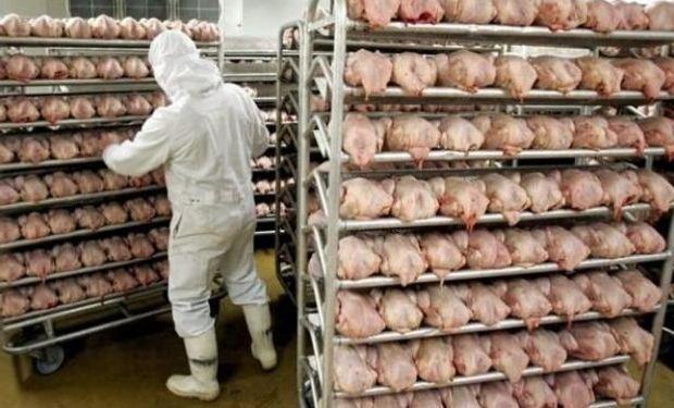 El consumo de carne aviar va en ascenso.