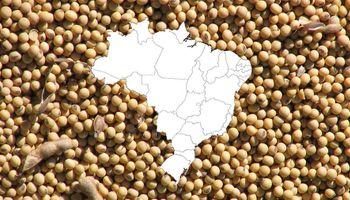 Brasil bate récords hasta de importación de soja y anticipan una mayor superficie para la campaña 2020/21