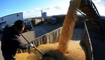 A China la soja no le alcanza