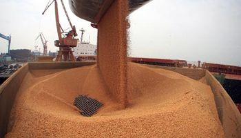 Perdieron fuerza las importaciones de soja por parte de China