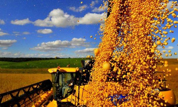 Exportaciones de soja de EEUU a China tendrán problemas y serán aplastadas por más exportaciones sudamericanas.