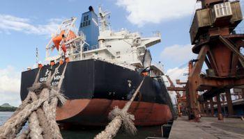 Fueron récord las exportaciones de soja argentina a China