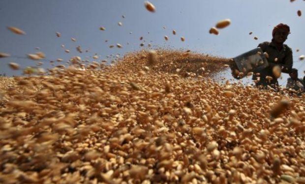 No prevén un impacto importante para el cereal argentino por la eventual apertura sin aranceles para el trigo de otros mercados.