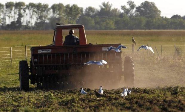 La Planificación fiscal en el Sector agropecuario.